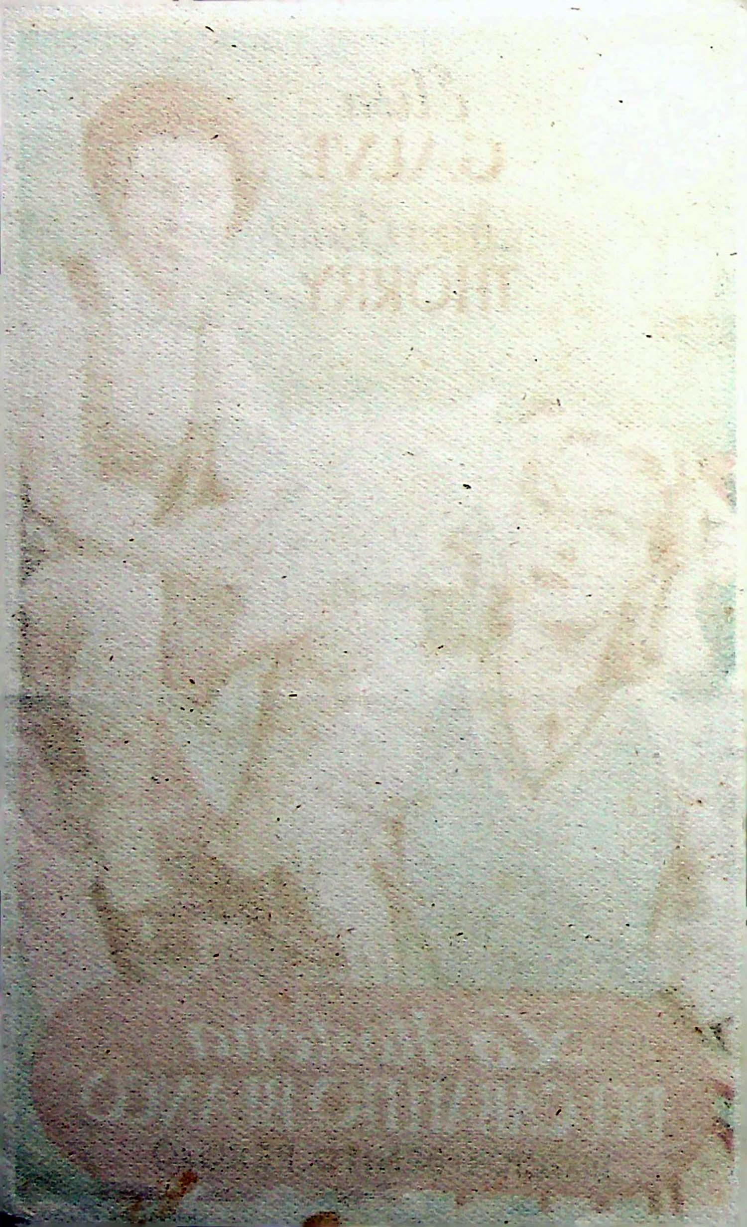 PROGRAMA DE MANO. LA HOSTERÍA DEL CABALLITO BLANCO. Elisa Galve