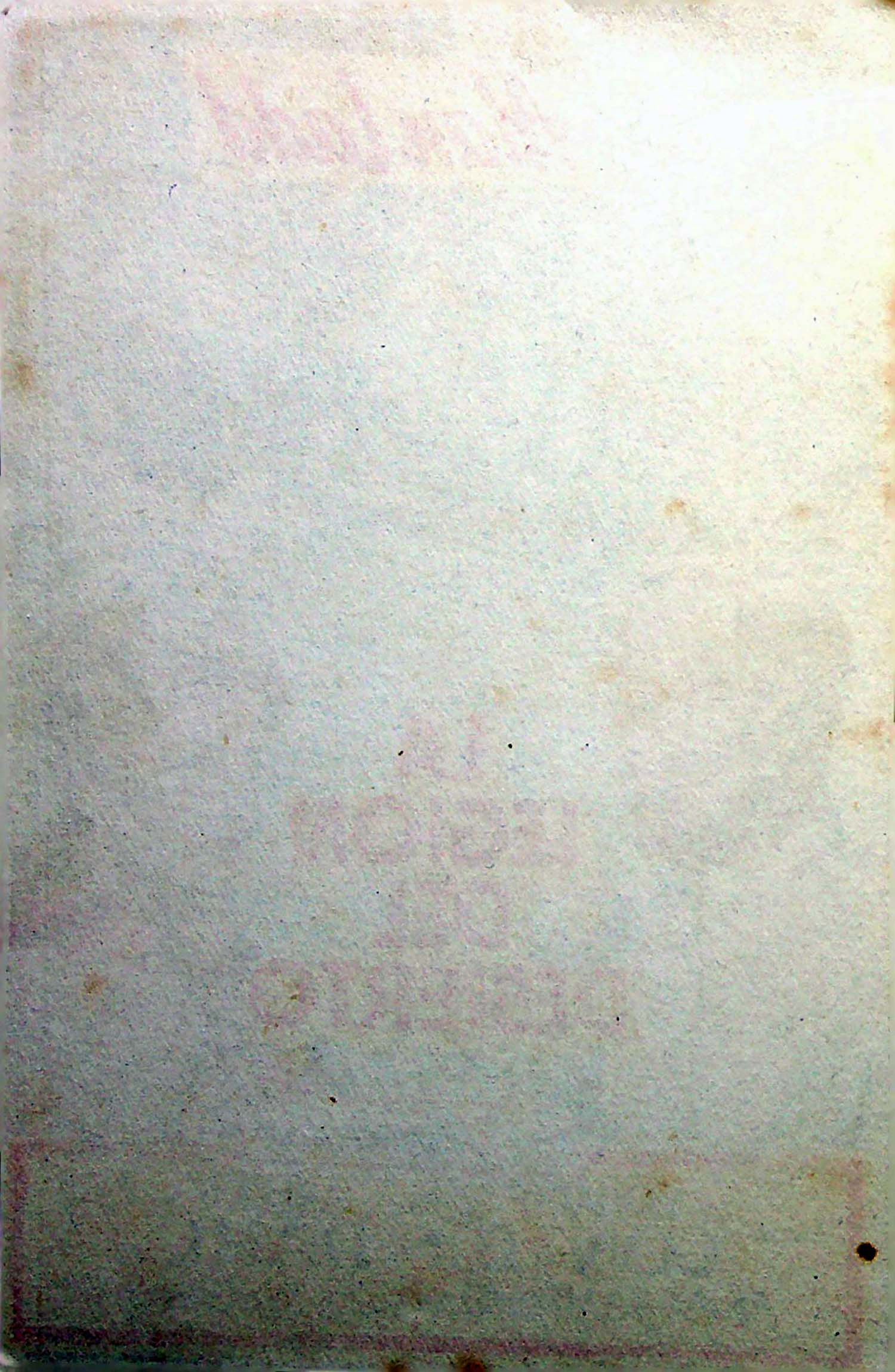 PROGRAMA DE MANO. LA LEGIÓN DEL DESIERTO. Alan Ladd